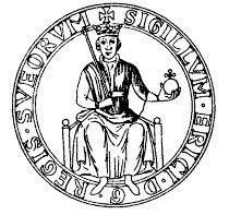 Erik Knutsson överlevde slaget vid Älgarås 1205 och besegrade Sverker d.y. två gånger: första gången vid Lena 1208 och andra gången vid Gestilren 1210.